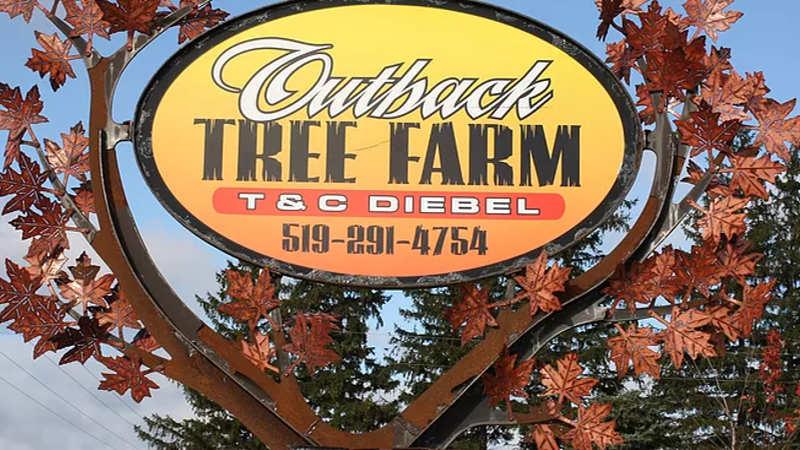 Outback Tree Farm